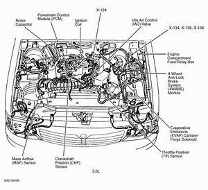 2003 Vw Passat V6 Engine Diagram Oil Lines
