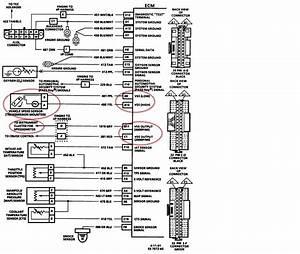 1986 Chevy Caprice Motor Diagram 41340 Enotecaombrerosse It