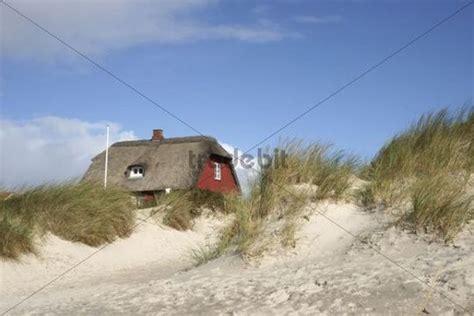 rotes ferienhaus  den duenen nordsee blavand daenemark