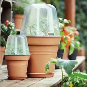Pot Pour Balcon : serre pour balcon toutes nos solutions marie claire ~ Teatrodelosmanantiales.com Idées de Décoration