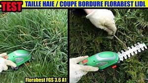 Taille Haie Telescopique Lidl : coupe bordures lidl florabest fgs 3 6 b2 taille haies test ~ Dailycaller-alerts.com Idées de Décoration
