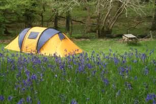File:Dinas camping - geograph.org.uk - 1731943.jpg - Wikimedia Commons