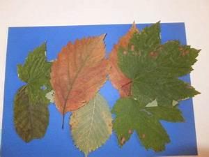 Aus Blättern Basteln : bild aus bl ttern basteln mit naturmaterial ~ Lizthompson.info Haus und Dekorationen