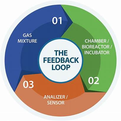 Feedback Control Loop Gas Monitoring Technology Automated
