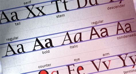 understanding the lingo typography glossary