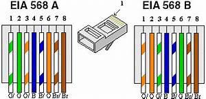 Branchement Prise Rj45 Legrand : vdi ~ Dailycaller-alerts.com Idées de Décoration