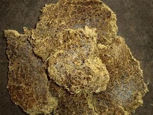 Cotton Seed Cake - 2 - Maharaja (China) - Animal Fodders ...