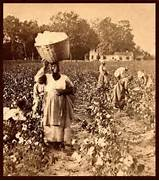 Blog  First Hand Accounts Of American Slavery In The 19th Century  Slavery In The South