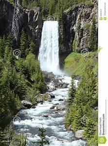 Broad Waterfall And River Surrounded By Trees. Stock Photo ...
