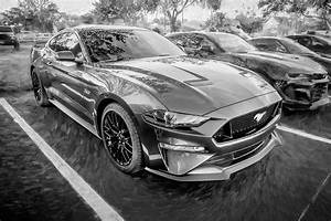 2019 Gray Ford Mustang GT 5.0 X155 Photograph by Rich Franco