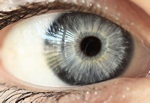 how to determine eye color how do genes determine eye color siowfa15 science in
