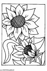Burning Wood Coloring Stencils Sunflower Patterns Template Stencil Pages Templates Painting sketch template