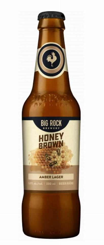 Honey Lager Beer Rock Costco Brown Cans