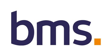Bms Risk Solutions Pty Ltd