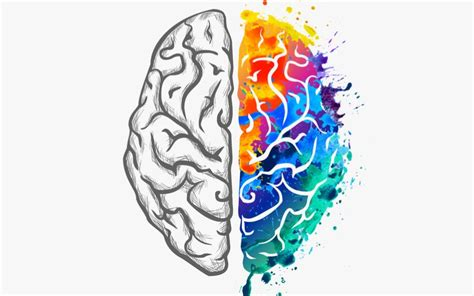 what color is a brain how your website s color scheme affects your marketing