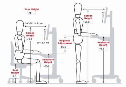 Ergonomic Desk Standing Setup Office Stand Ergonomics