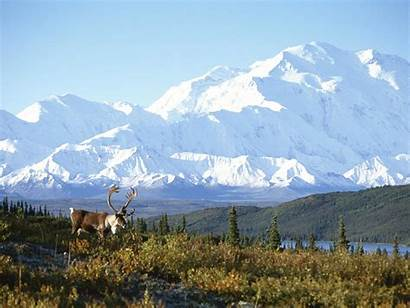 Alaska Snow Mountain Capped Wallpapers Nature Google
