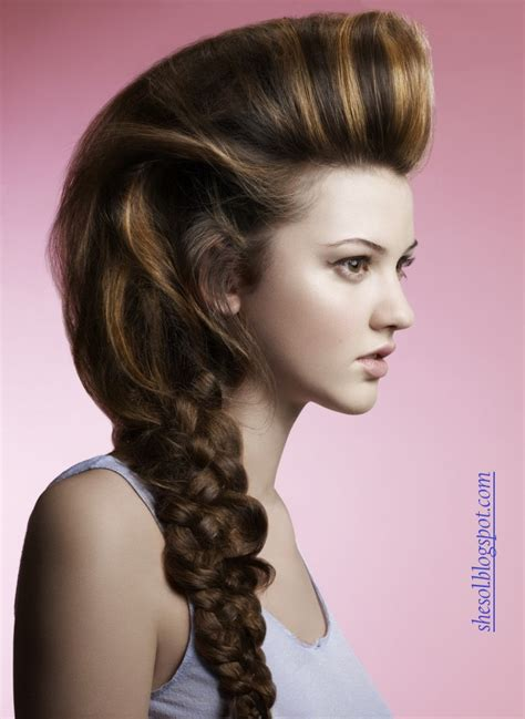 sol  ponytail hairstyles