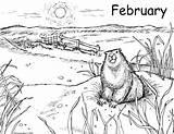 Marmotte Groundhog Kolorowanki Luty Dzieci Rietz Worksheet Murmeltier Wunderbares Groundhogs Written Coloriages Entitlementtrap Doghousemusic sketch template