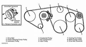 2004 Infiniti Qx56 Serpentine Belt Routing And Timing Belt