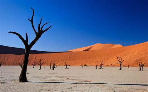 image result  desert landscape gc terrain pinterest
