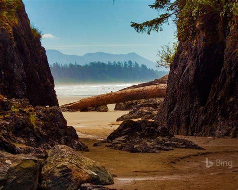 Canada Beach Near Tofino Vancouver Island 2017 Bing