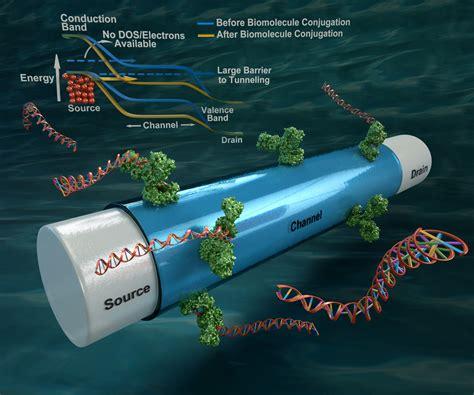 Sensitive Biosensor Key to Instant Diagnostic Devices