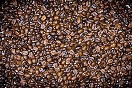 Take it from the experts at mr. Disposals and Coffee Grounds - Drains R Us Denver