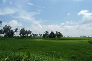 Early Human Settlement in Coastal Western India ...  Plain
