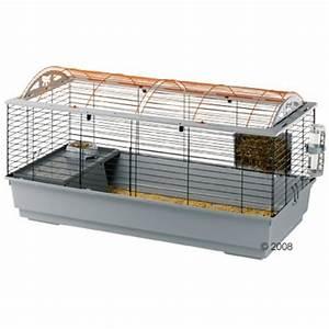 Cage A Cochon D Inde : cage cochon d 39 inde hamsters cochons d 39 inde lapins ~ Dallasstarsshop.com Idées de Décoration