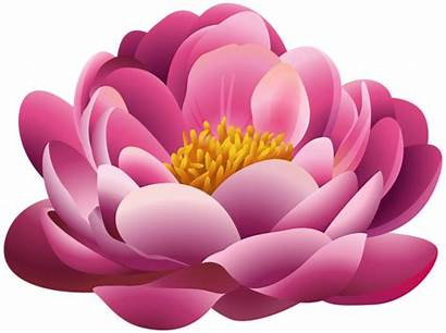 Flower Clipart Pink Flowers Pretty Plant Clip