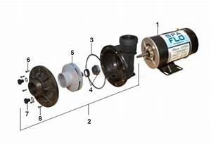 Waterway Spa-flo Pump Parts