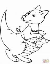 Baby Kangaroo Coloring Mother Pages Kangaroos Drawing Printable Crafts Supercoloring sketch template