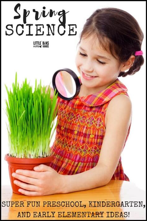 science activities for to do indoors and outdoors 333   Spring science activities outdoor science and nature science for young kids. Spring activities for preschool science kindergarten science and earl elementary science. 2 680x1020
