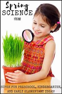Spring Science Activities For Kids To Do Indoors And Outdoors