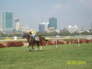 Memebers Enclousre - Picture of Royal Western India Turf ...