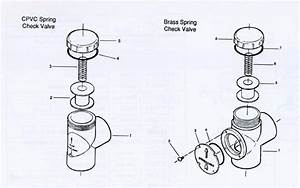 Pentair Ortega Check Valve Parts  Parts Diagram