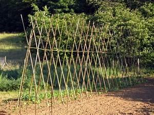 Comment Tuteurer Les Tomates : tuteurer plantes arbres et arbustes ~ Melissatoandfro.com Idées de Décoration