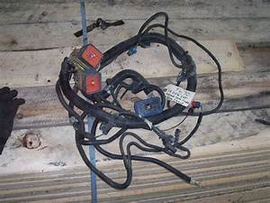 Wire Harness Offered By White  U0026 Bradstreet  Inc