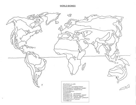 worksheets biomes of the world worksheet waytoohuman