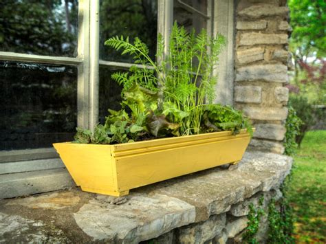 Garden In A Box by Grow A Window Box Vegetable Garden How Tos Diy