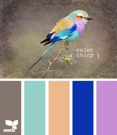 color palettes images  pinterest color