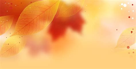 fall autumn email stationery stationary fall leaves