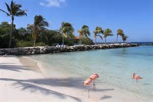 Renaissance Aruba Adult Beach