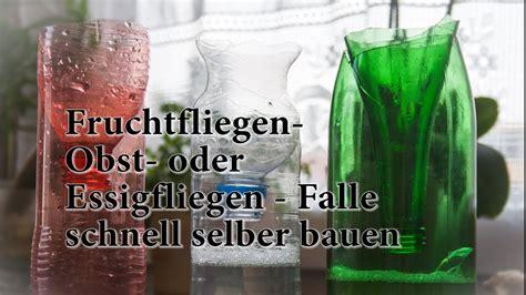 Falle Aus Pet Flasche Basteln