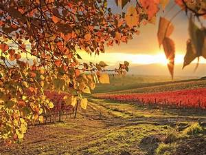 Sunrise Autumn Connecticut wallpapers | Sunrise Autumn ...