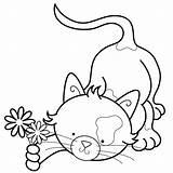Colorir Imprimir Embroidery Pintar Desenhos Gatos Gatinhos Coloring Coloriage Marisa Straccia Fofos Animaux Patterns Gato Colouring Jogos Bogg sketch template