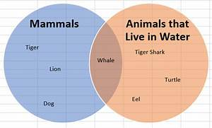 Venn diagram excel 2010 choice image how to guide and refrence venn diagram visio 2010 choice image how to guide and refrence ccuart Image collections