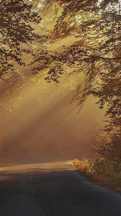 Nature Morning Iphone Sunlight Fall Mountain Tree