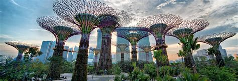 bay by the garden gardens by the bay urban park in singapore thousand wonders